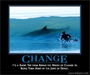change shark